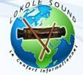 LokoleNews logo